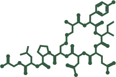 A ocitocina natural